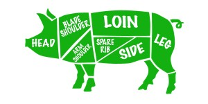 Pig Diagram small